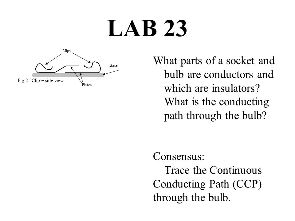 LAB 23 What parts of a socket and bulb are conductors and which are insulators.