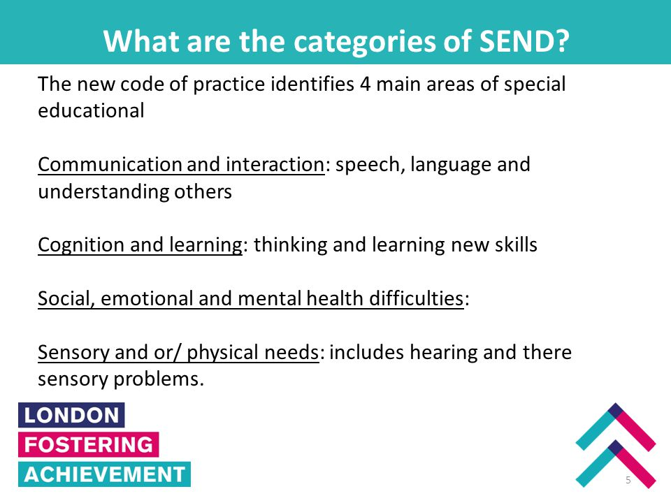 What are the categories of SEND.