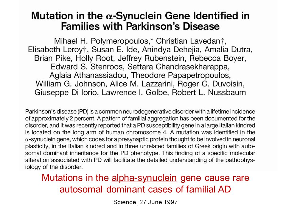 Mutations in the alpha-synuclein gene cause rare autosomal dominant cases of familial AD Science, 27 June 1997