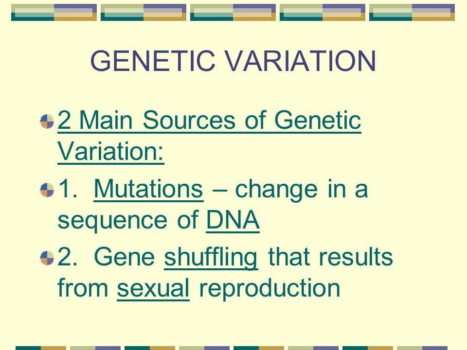 GENETIC VARIATION 2 Main Sources of Genetic Variation: 1.