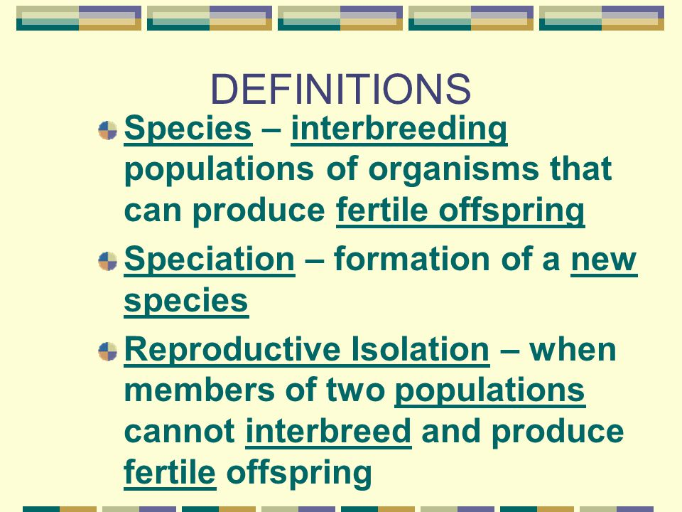 DEFINITIONS Species – interbreeding populations of organisms that can produce fertile offspring Speciation – formation of a new species Reproductive Isolation – when members of two populations cannot interbreed and produce fertile offspring