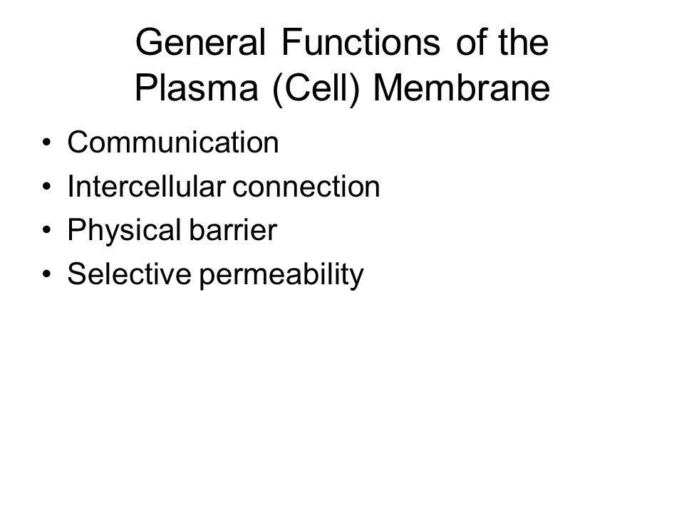 General Functions of the Plasma (Cell) Membrane Communication Intercellular connection Physical barrier Selective permeability