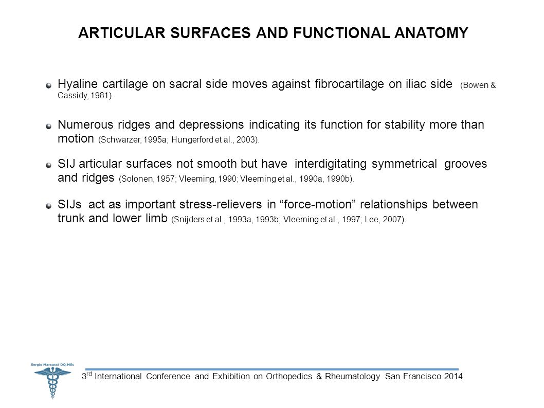 3 rd International Conference and Exhibition on Orthopedics & Rheumatology San Francisco 2014 ARTICULAR SURFACES AND FUNCTIONAL ANATOMY Hyaline cartilage on sacral side moves against fibrocartilage on iliac side (Bowen & Cassidy, 1981).
