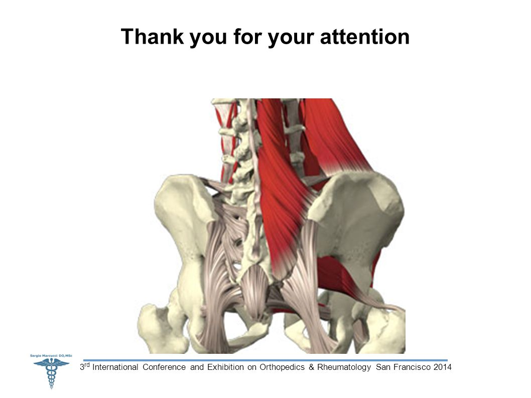 3 rd International Conference and Exhibition on Orthopedics & Rheumatology San Francisco 2014 Thank you for your attention