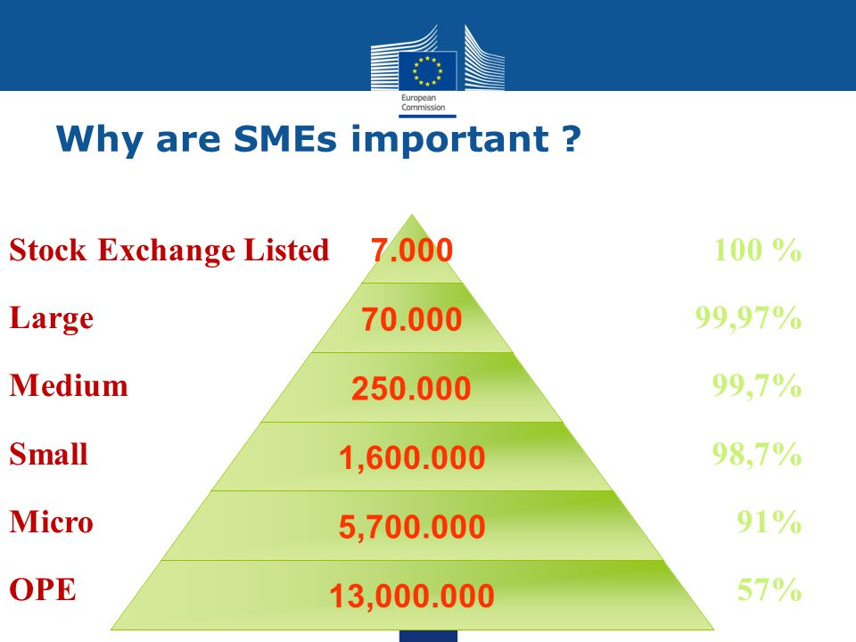 Why are SMEs important .