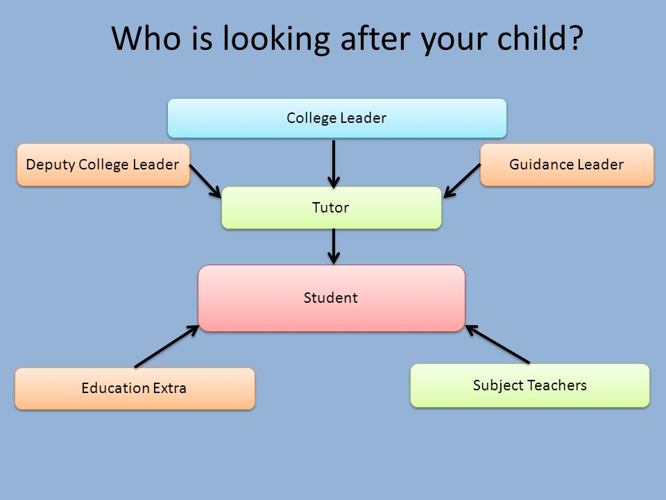 Student Tutor Guidance Leader Education Extra College Leader Who is looking after your child.