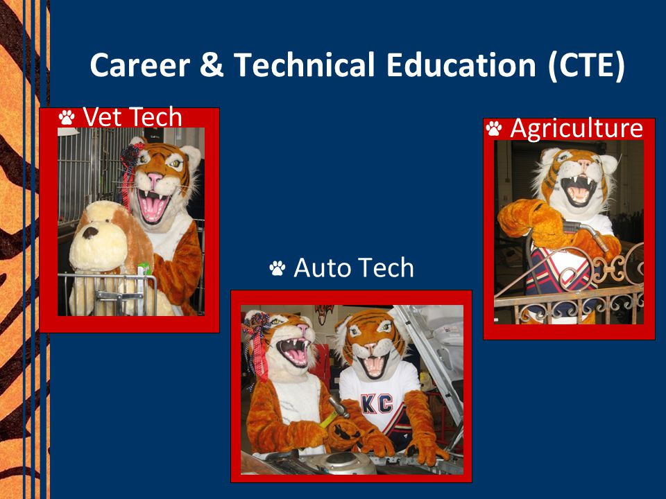 Career & Technical Education (CTE) Auto Tech Agriculture Vet Tech