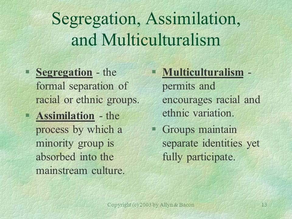 Copyright (c) 2003 by Allyn & Bacon13 Segregation, Assimilation, and Multiculturalism §Segregation - the formal separation of racial or ethnic groups.