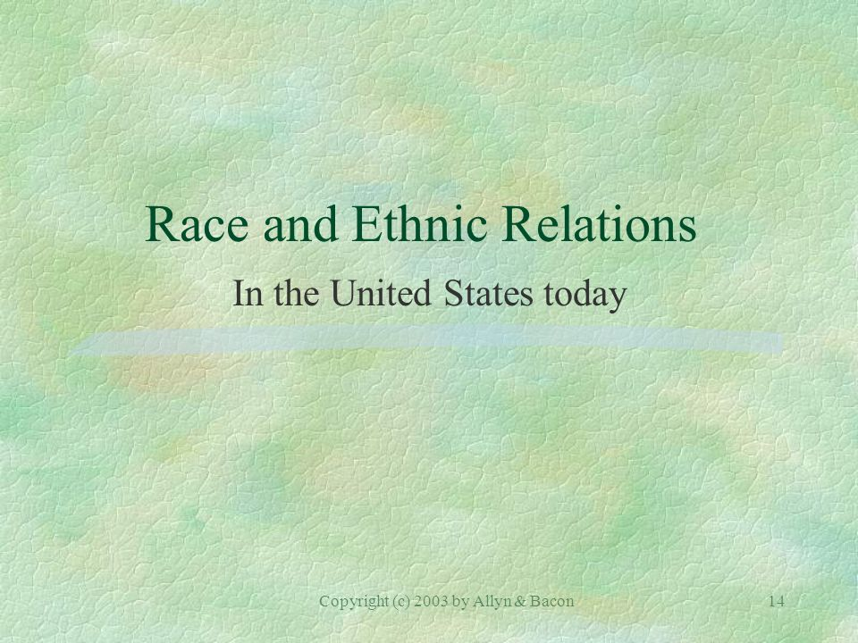 Copyright (c) 2003 by Allyn & Bacon14 Race and Ethnic Relations In the United States today