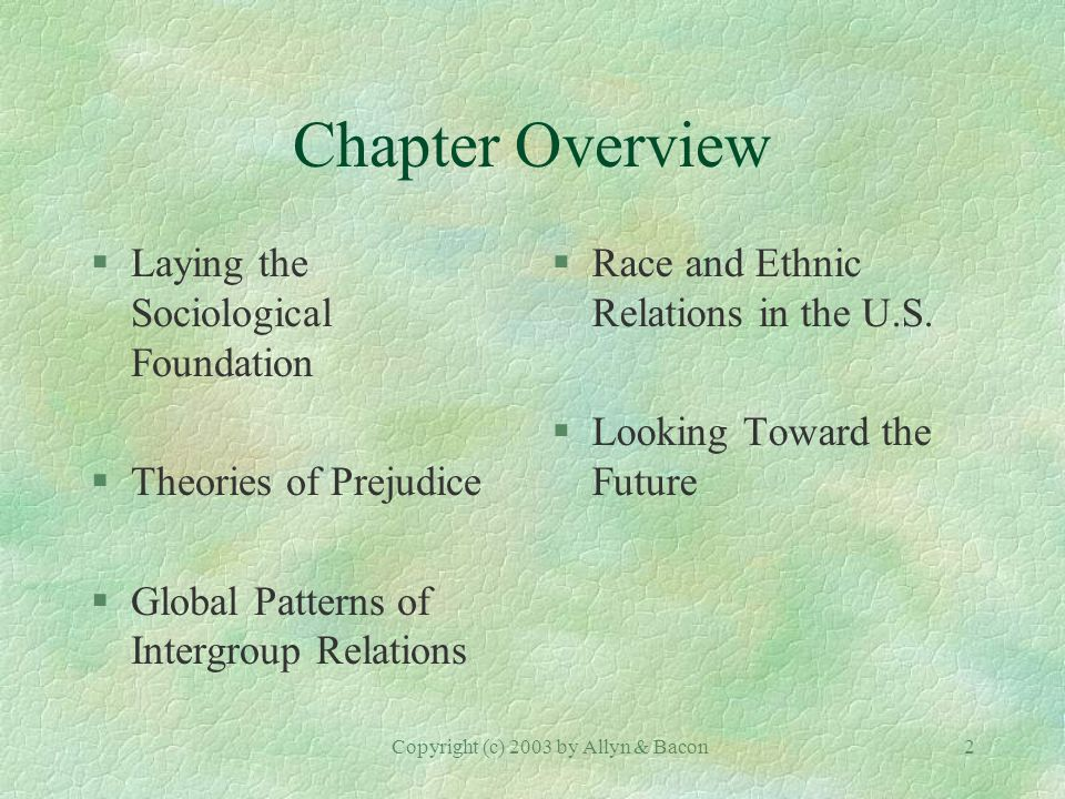 Copyright (c) 2003 by Allyn & Bacon2 Chapter Overview §Laying the Sociological Foundation §Theories of Prejudice §Global Patterns of Intergroup Relations §Race and Ethnic Relations in the U.S.