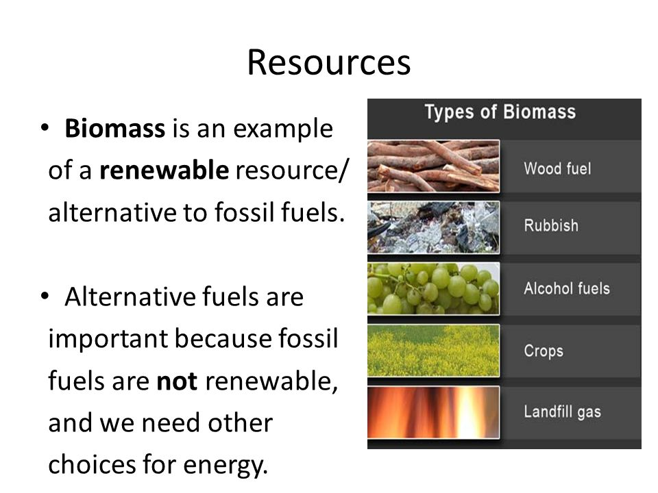 Biomass is an example of a renewable resource/ alternative to fossil fuels.
