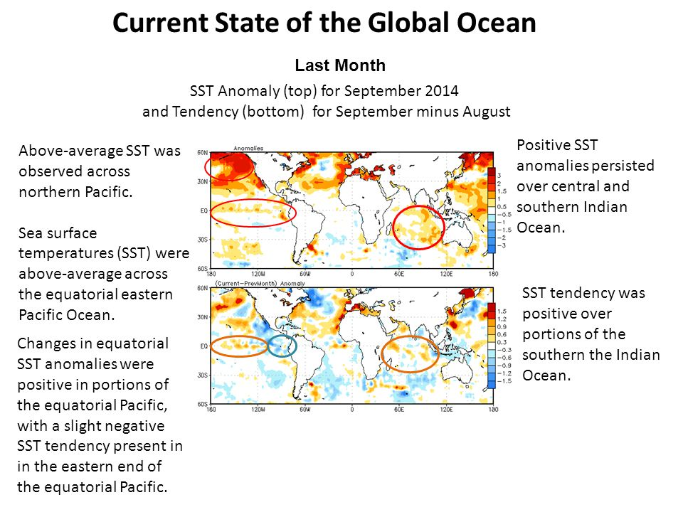 Above-average SST was observed across northern Pacific.