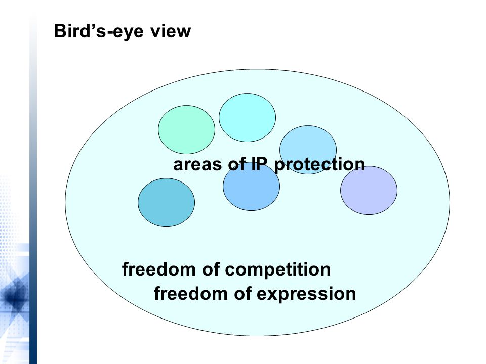 freedom of competition areas of IP protection Bird's-eye view freedom of expression