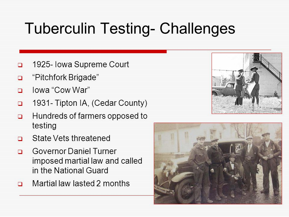Tuberculin Testing- Challenges  1925- Iowa Supreme Court  Pitchfork Brigade  Iowa Cow War  1931- Tipton IA, (Cedar County)  Hundreds of farmers opposed to testing  State Vets threatened  Governor Daniel Turner imposed martial law and called in the National Guard  Martial law lasted 2 months