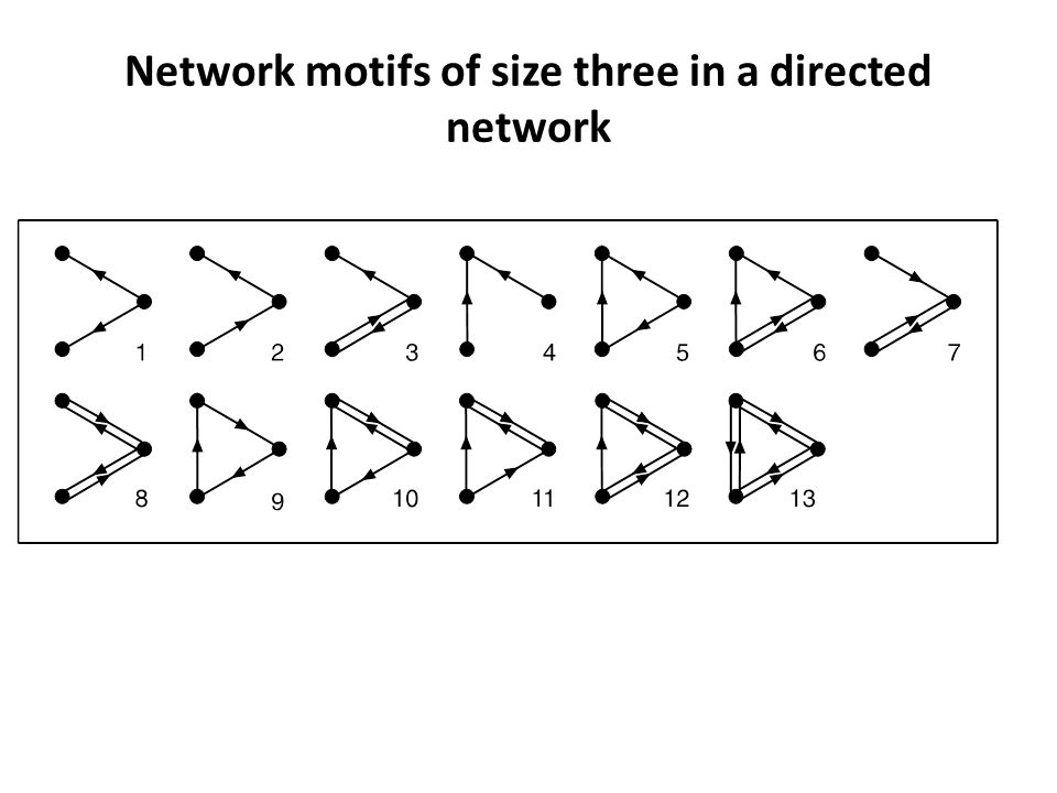 Network motifs of size three in a directed network