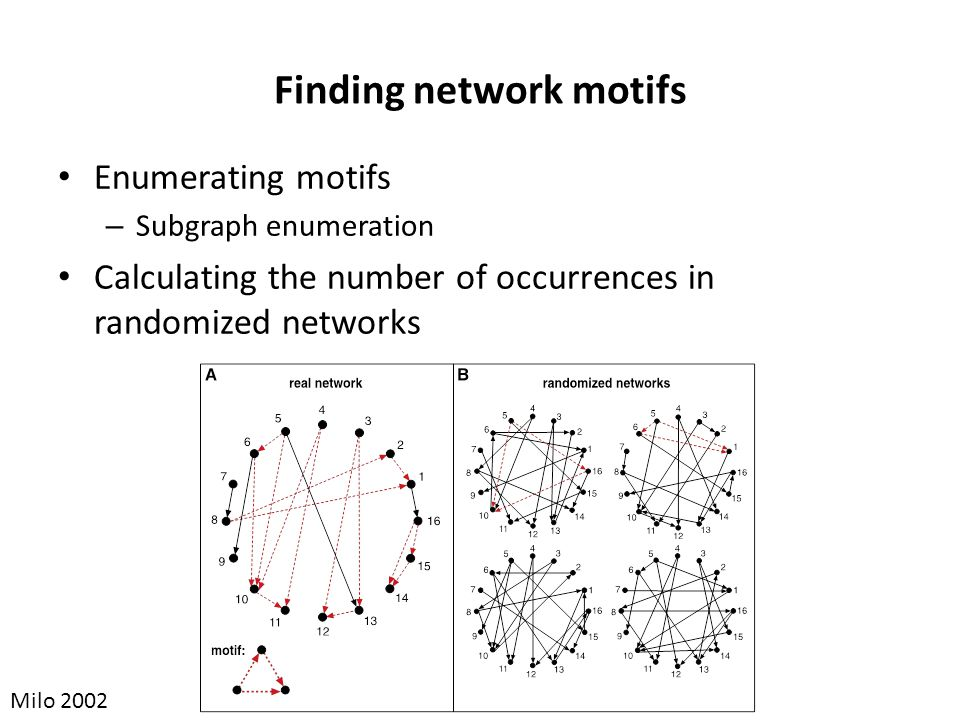 Finding network motifs Enumerating motifs – Subgraph enumeration Calculating the number of occurrences in randomized networks Milo 2002