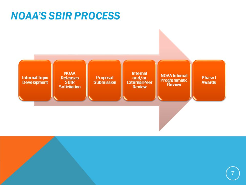 Internal Topic Development NOAA Releases SBIR Solicitation Proposal Submission Internal and/or External Peer Review NOAA Internal Programmatic Review Phase I Awards NOAA'S SBIR PROCESS 7