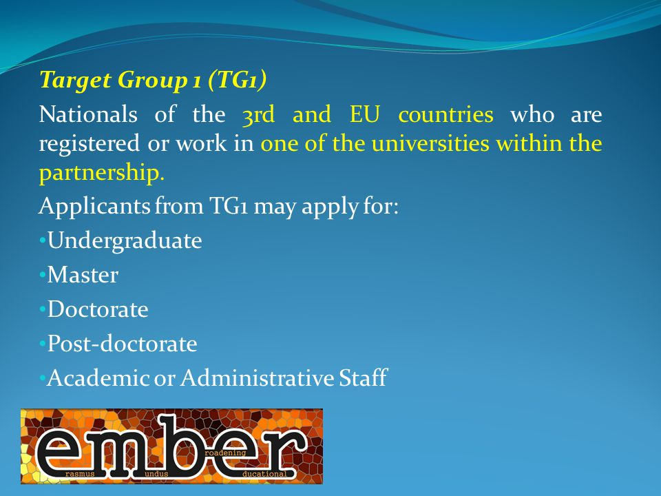 Target Group 1 (TG1) Nationals of the 3rd and EU countries who are registered or work in one of the universities within the partnership.