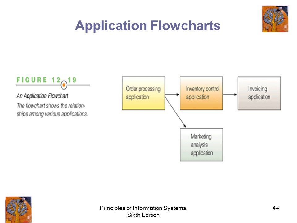 Principles of Information Systems, Sixth Edition 44 Application Flowcharts