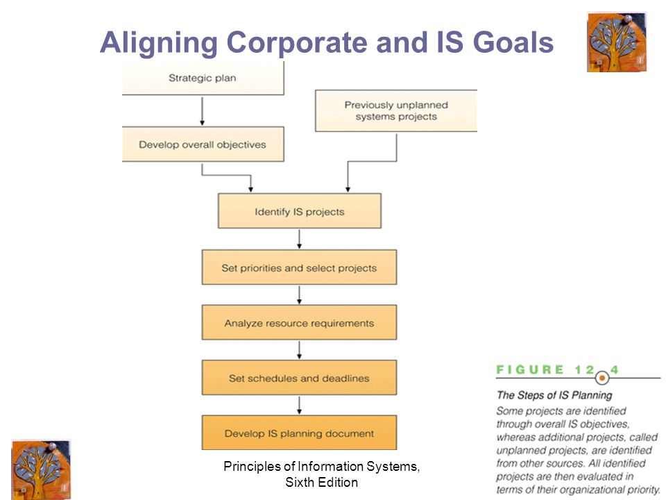 Principles of Information Systems, Sixth Edition 7 Aligning Corporate and IS Goals