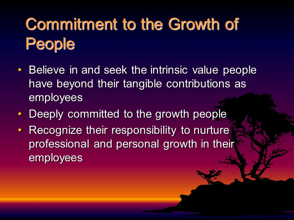 Commitment to the Growth of People Believe in and seek the intrinsic value people have beyond their tangible contributions as employeesBelieve in and seek the intrinsic value people have beyond their tangible contributions as employees Deeply committed to the growth peopleDeeply committed to the growth people Recognize their responsibility to nurture professional and personal growth in their employeesRecognize their responsibility to nurture professional and personal growth in their employees