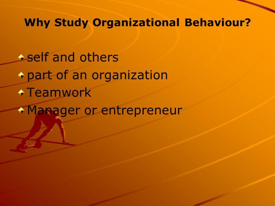 Why Study Organizational Behaviour.