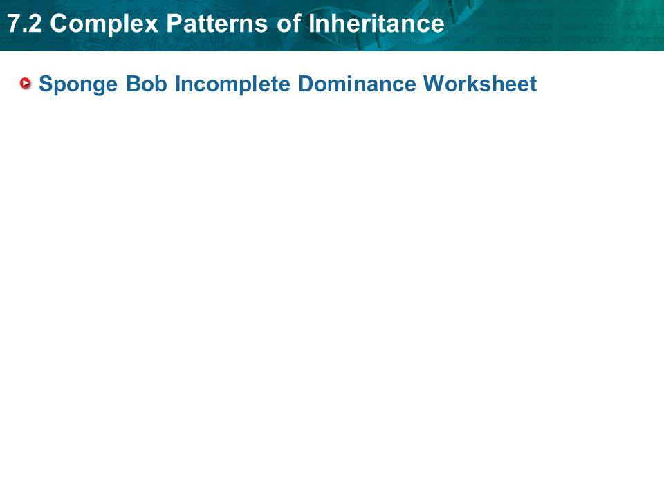 Worksheets Patterns Of Inheritance Worksheet patterns of inheritance worksheet hypeelite intrepidpath