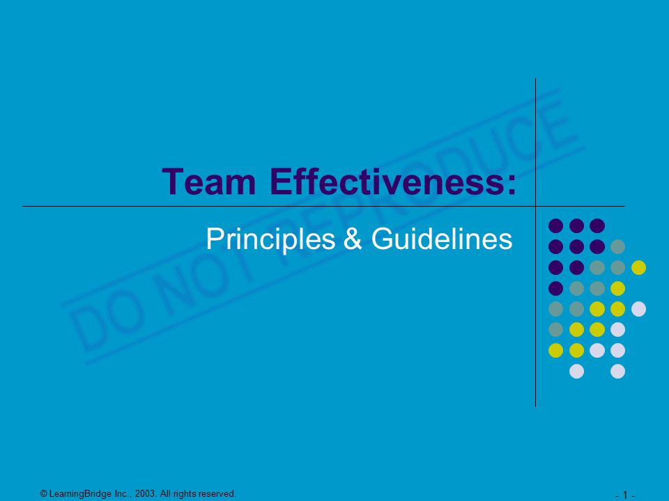 © LearningBridge Inc., 2003. All rights reserved. - 1 - Team Effectiveness: Principles & Guidelines