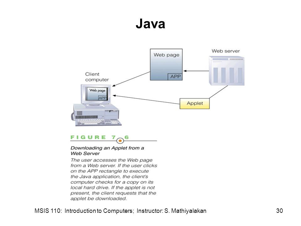 MSIS 110: Introduction to Computers; Instructor: S. Mathiyalakan30 Java