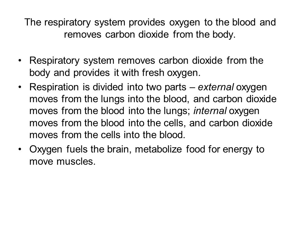 The respiratory system provides oxygen to the blood and removes carbon dioxide from the body.