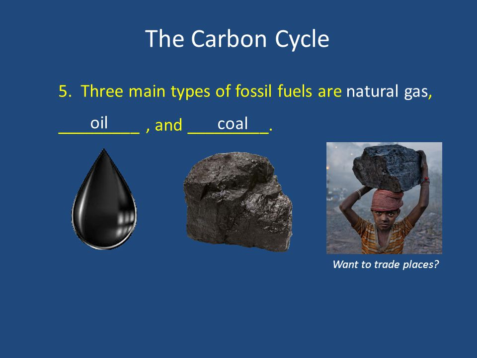 The Carbon Cycle 5. Three main types of fossil fuels are natural gas, _________, and _________.