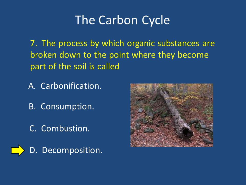 The Carbon Cycle 7.