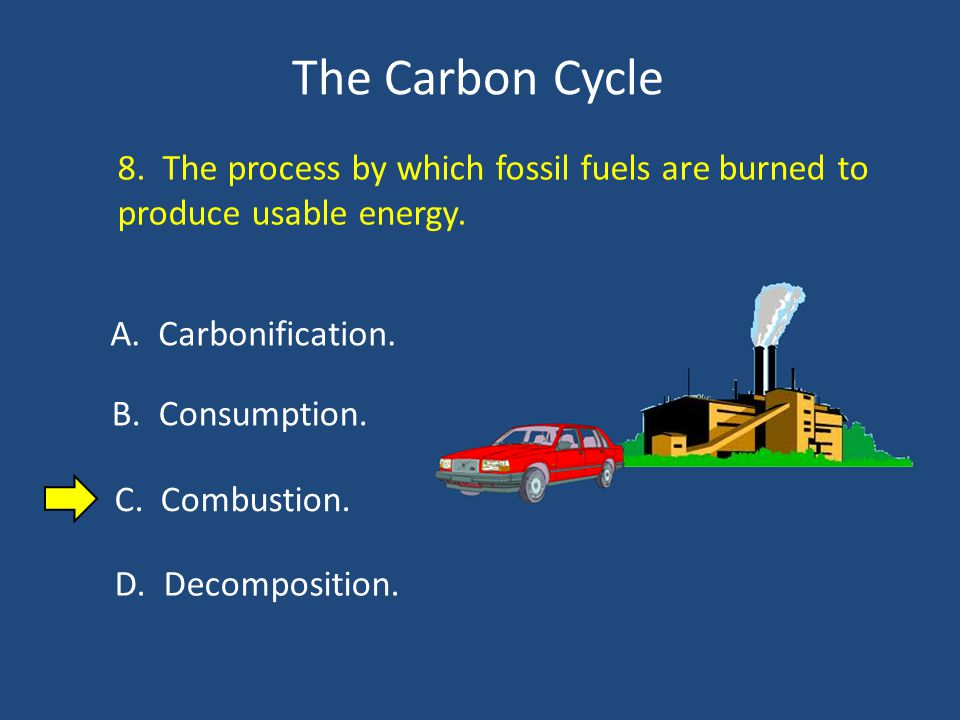 The Carbon Cycle 8. The process by which fossil fuels are burned to produce usable energy.