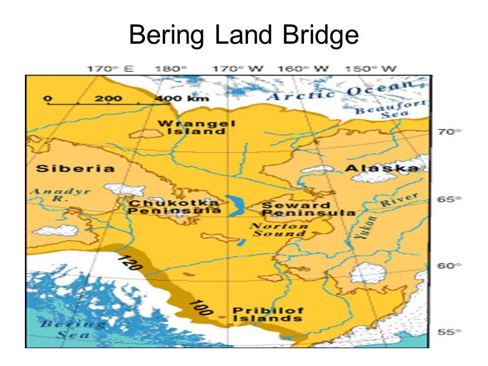 Bering Land Bridge
