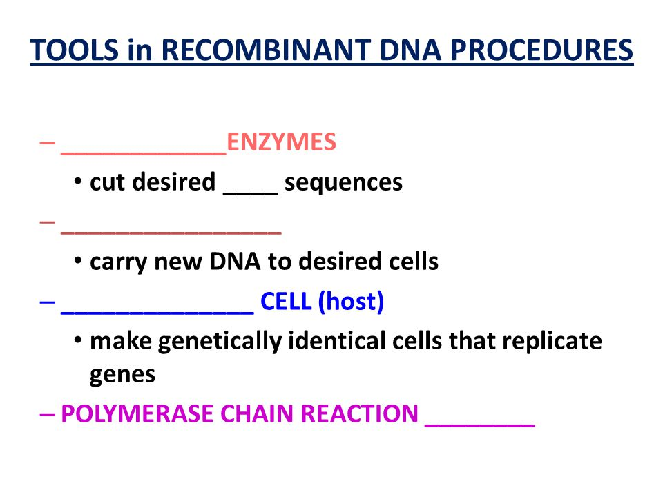 TOOLS in RECOMBINANT DNA PROCEDURES – ____________ENZYMES cut desired ____ sequences – ________________ carry new DNA to desired cells – ______________ CELL (host) make genetically identical cells that replicate genes – POLYMERASE CHAIN REACTION ________