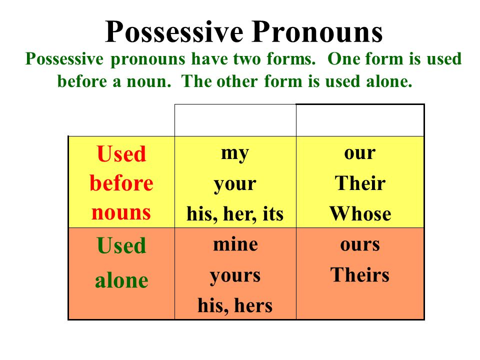 Possessive Pronouns Possessive pronouns have two forms.