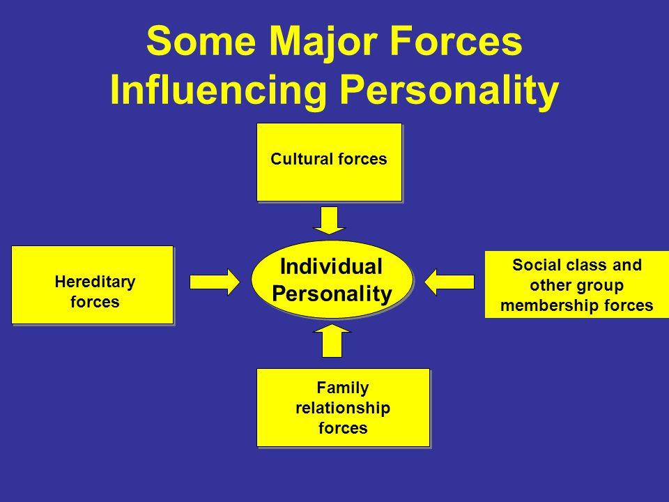 Some Major Forces Influencing Personality Individual Personality Individual Personality Social class and other group membership forces Family relationship forces Hereditary forces Cultural forces