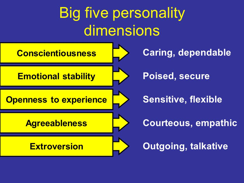Outgoing, talkative Courteous, empathic Caring, dependable Poised, secure Sensitive, flexible Big five personality dimensions ExtroversionAgreeablenessConscientiousnessEmotional stabilityOpenness to experience