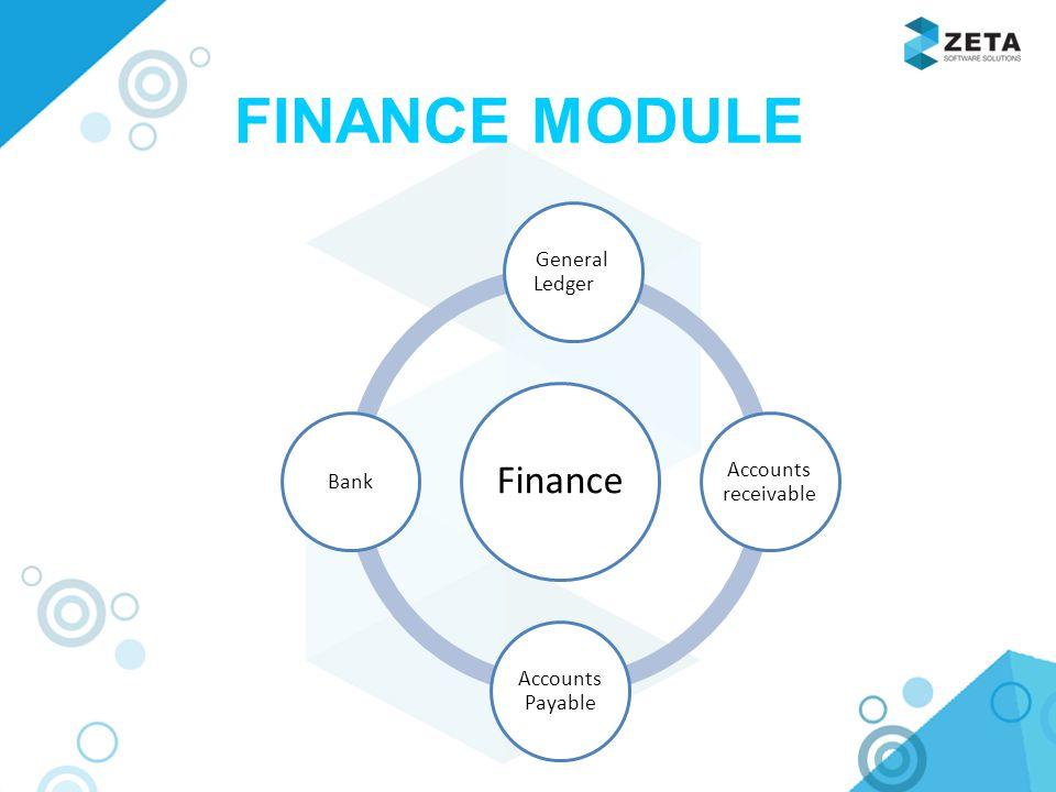 finance ledger