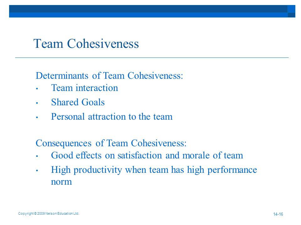 Team Cohesiveness Copyright © 2009 Nelson Education Ltd.