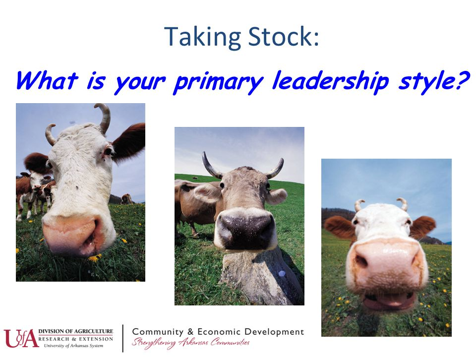 Taking Stock: What is your primary leadership style?