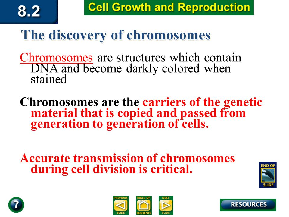 Section 8.2 Summary – pages The discovery of chromosomes Chromosomes are structures which contain DNA and become darkly colored when stained Chromosomes are the carriers of the genetic material that is copied and passed from generation to generation of cells.