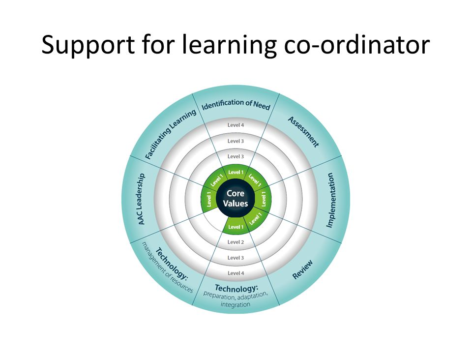 Support for learning co-ordinator