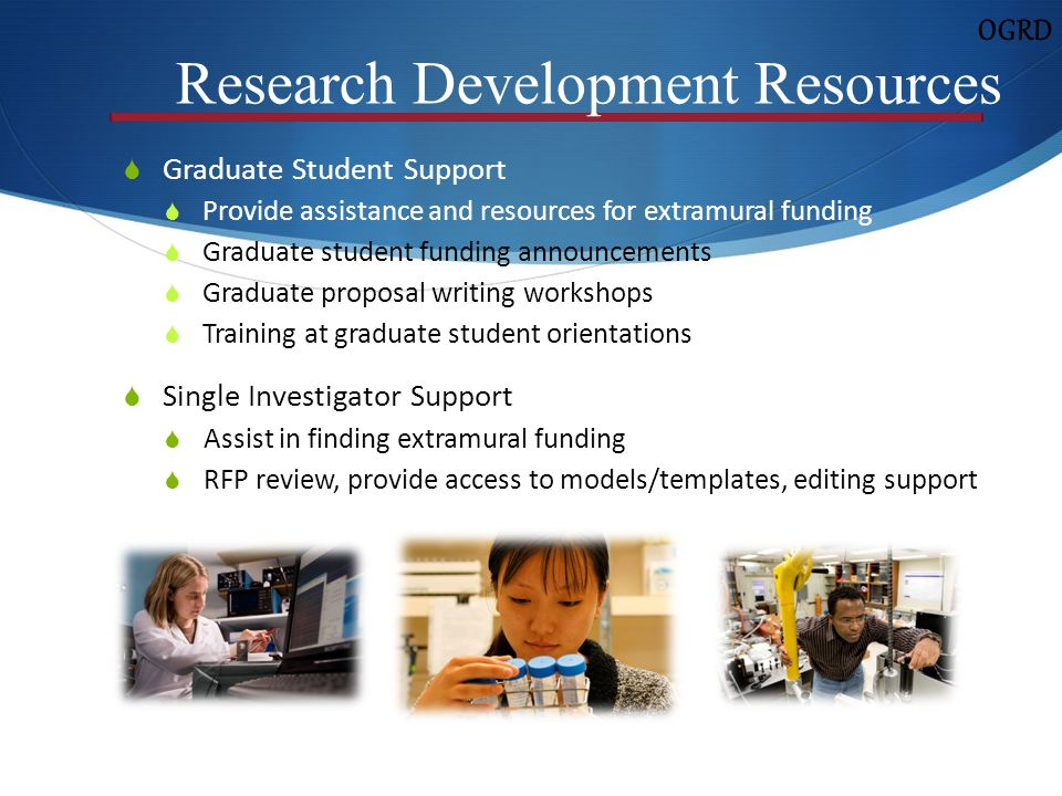 research and development essay