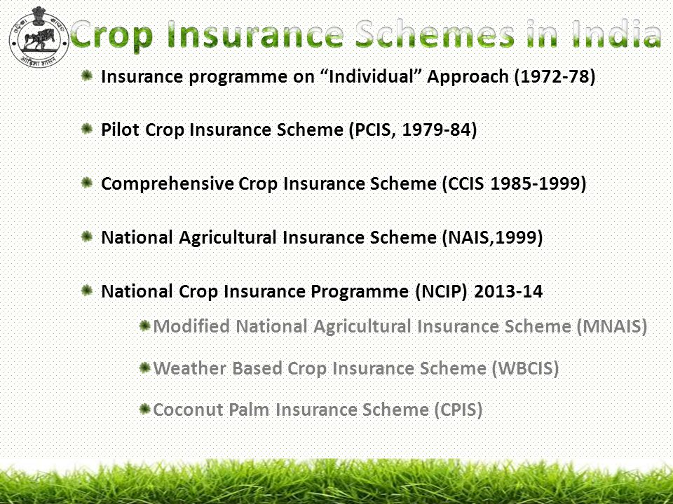 "Insurance programme on ""Individual"" Approach ( ). Pilot Crop ..."