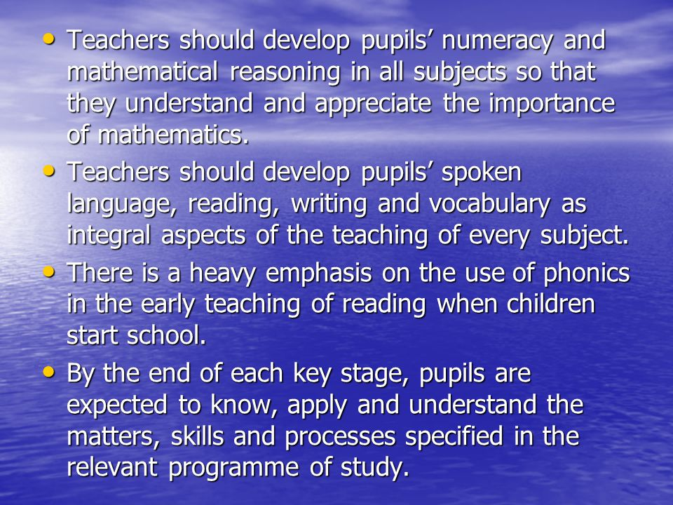 Teachers should develop pupils' numeracy and mathematical reasoning in all subjects so that they understand and appreciate the importance of mathematics.