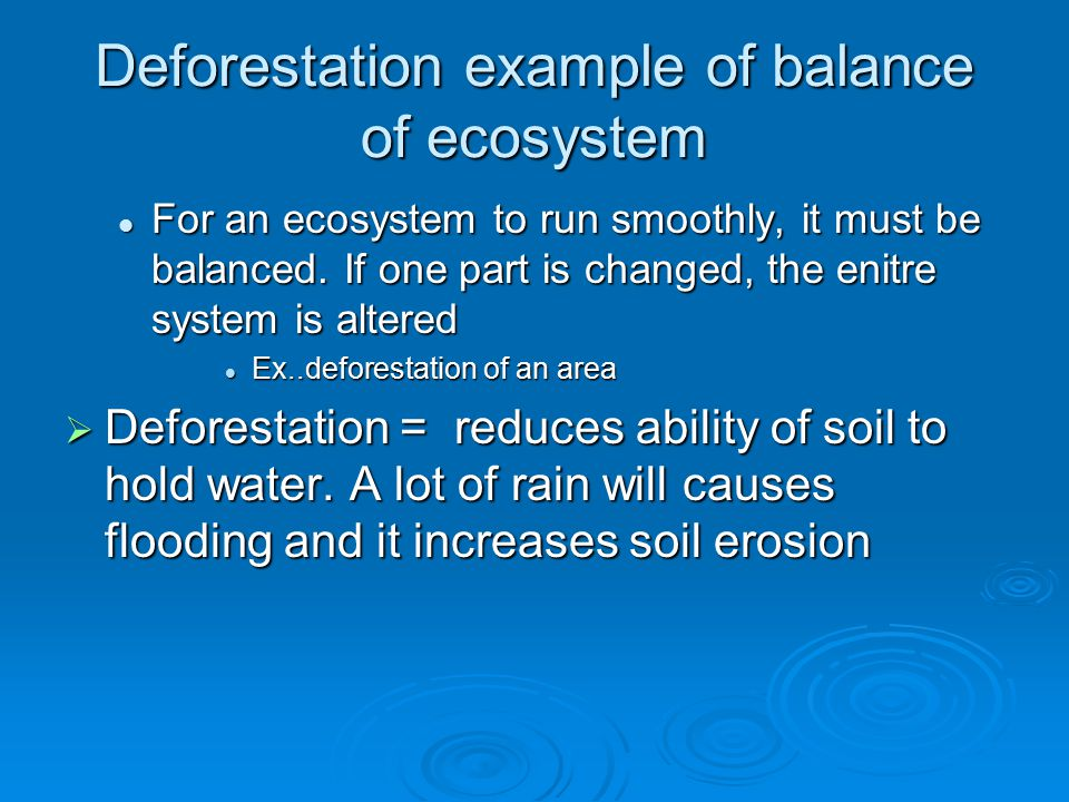 """essay about deforestation causes The causes and effects of deforestation essaythe causes and effects of deforestation deforestation is becoming more and more popular in many countries all over the world """"based on environment statistics, more than half of the trees in this world are gone due to human activity"""" (nayak,2008), this action has been direct influences."""