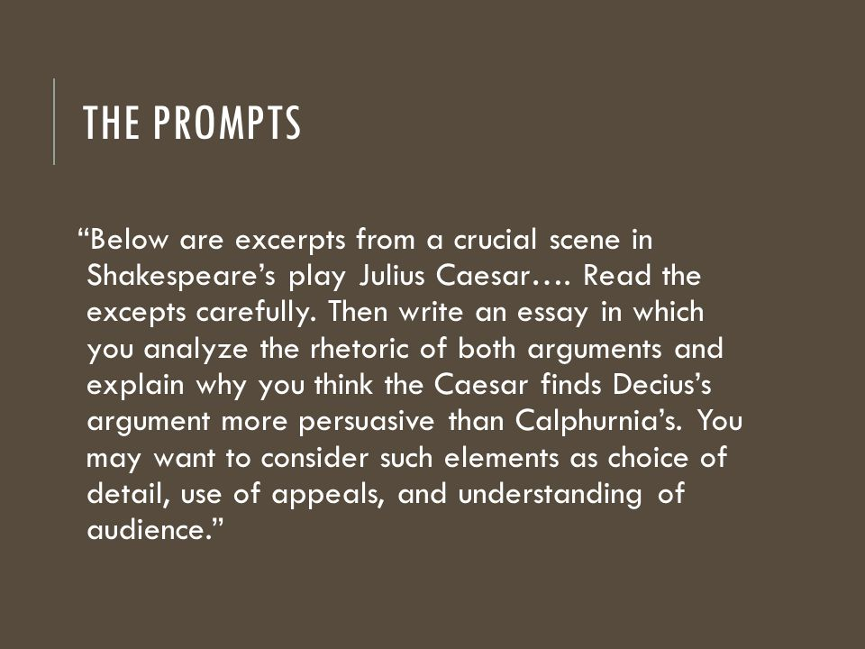 write essay examples