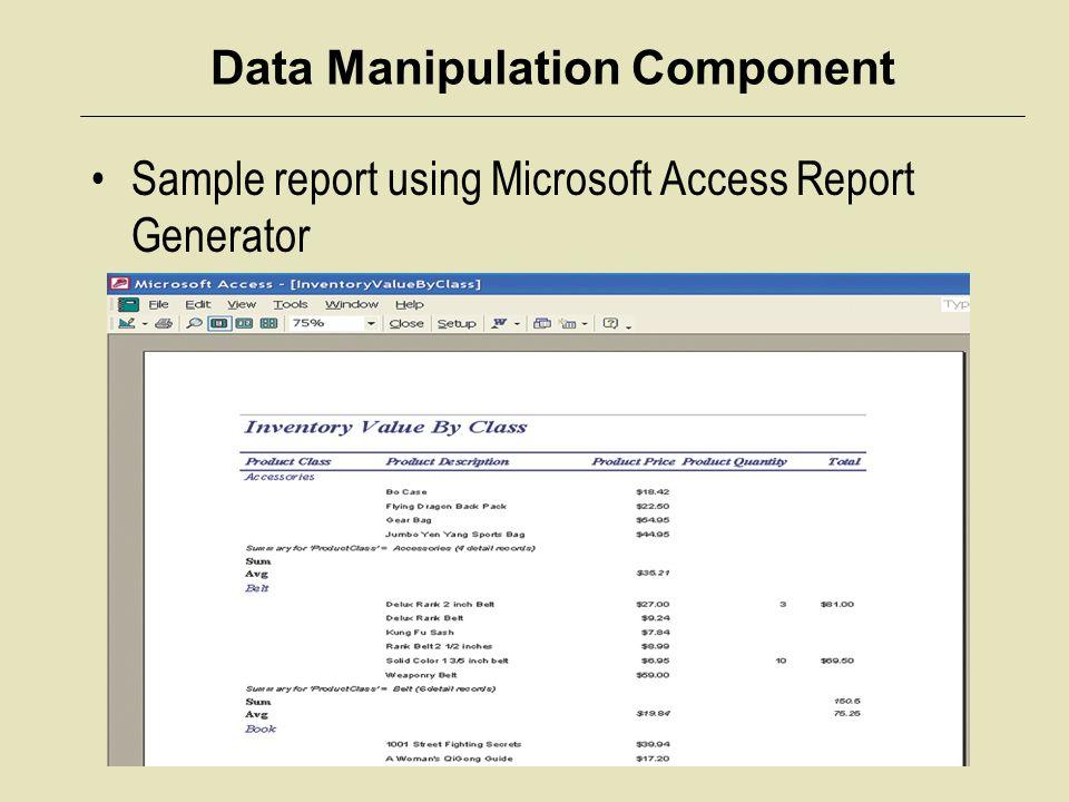 Data Manipulation Component Sample report using Microsoft Access Report Generator