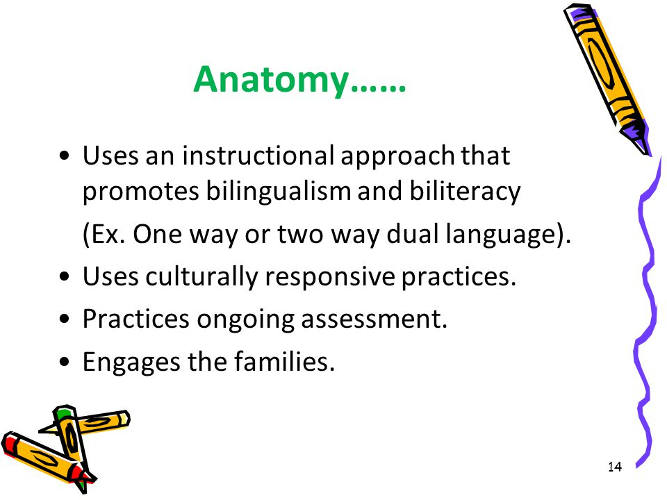 Anatomy…… Uses an instructional approach that promotes bilingualism and biliteracy (Ex.